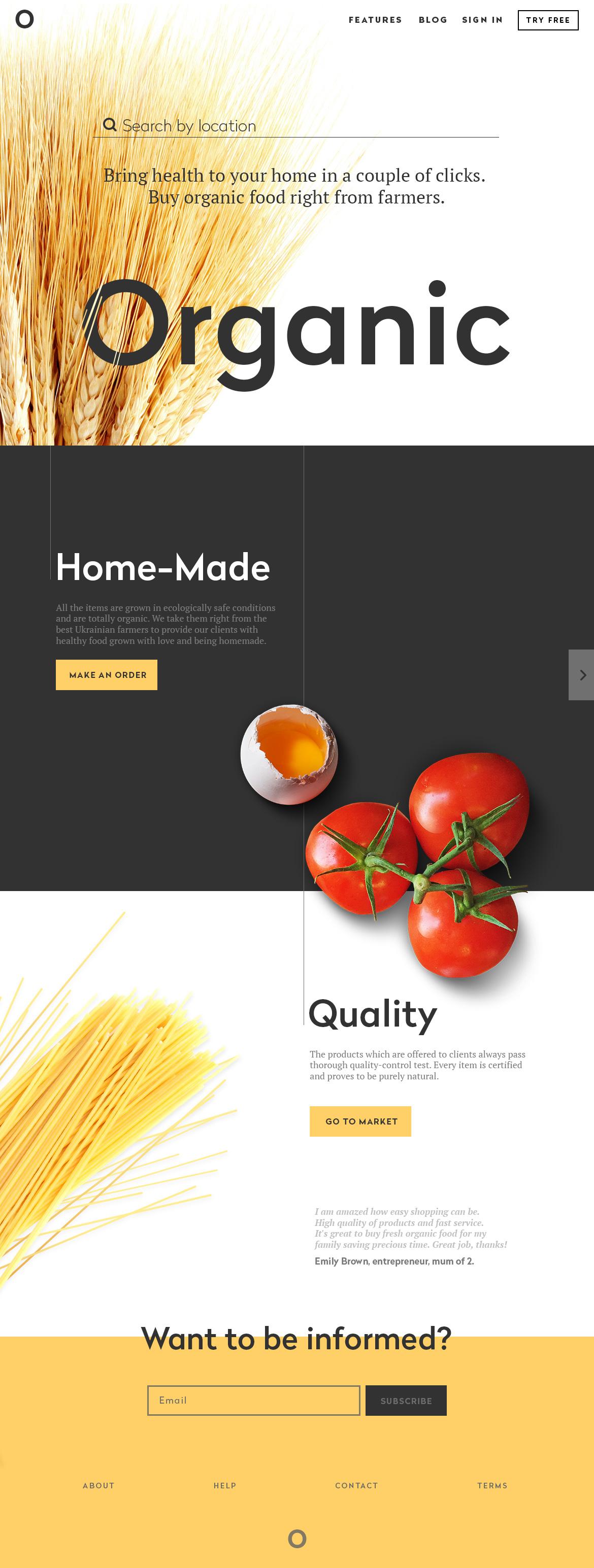 web design landing page UI
