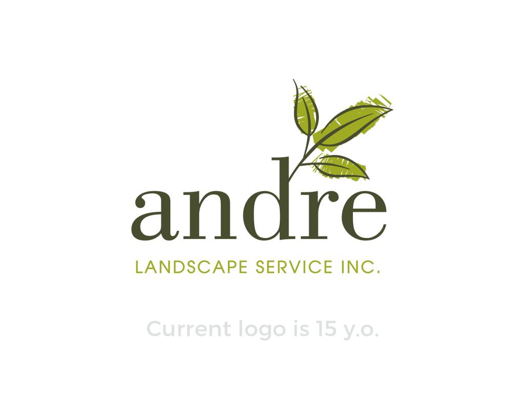 andre-logo-design-case-study