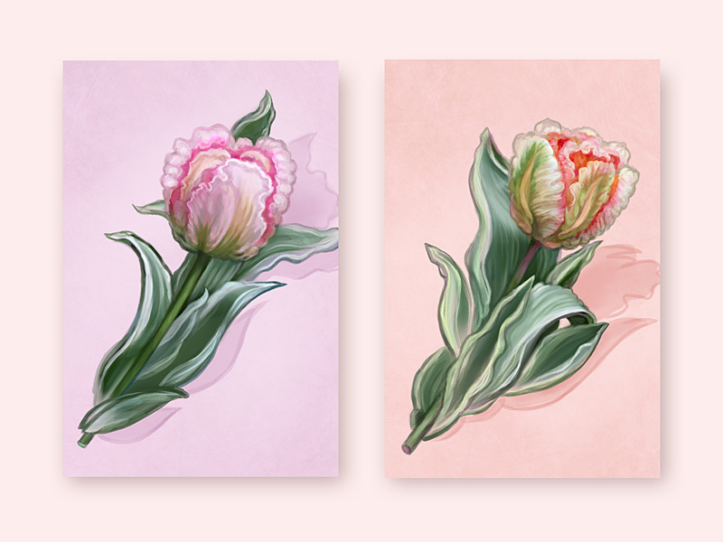 beautiful_tulips_by_digital_space