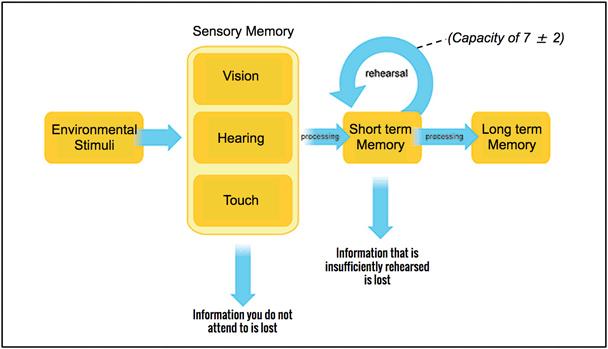 memory-work