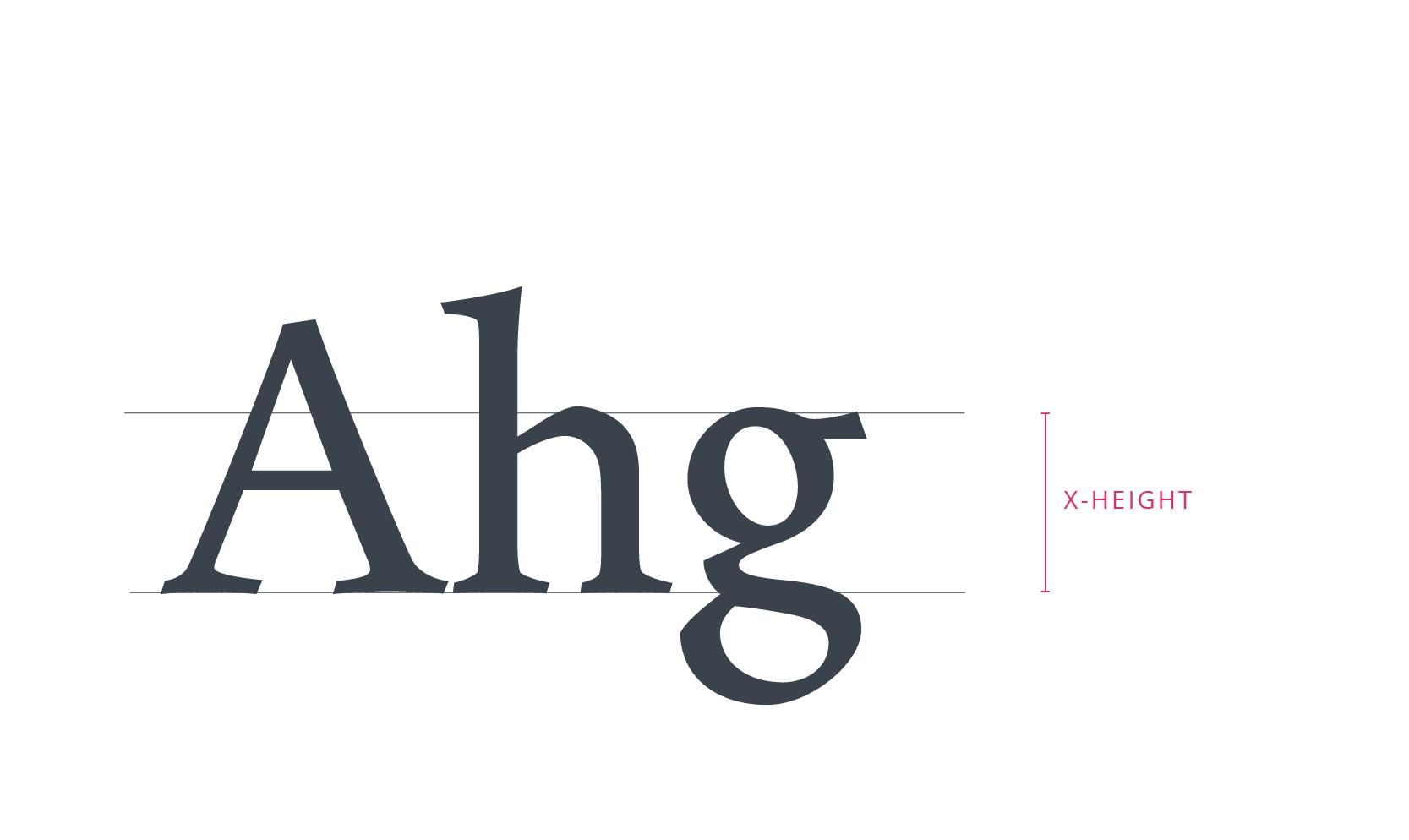 tubik_typography_x_height