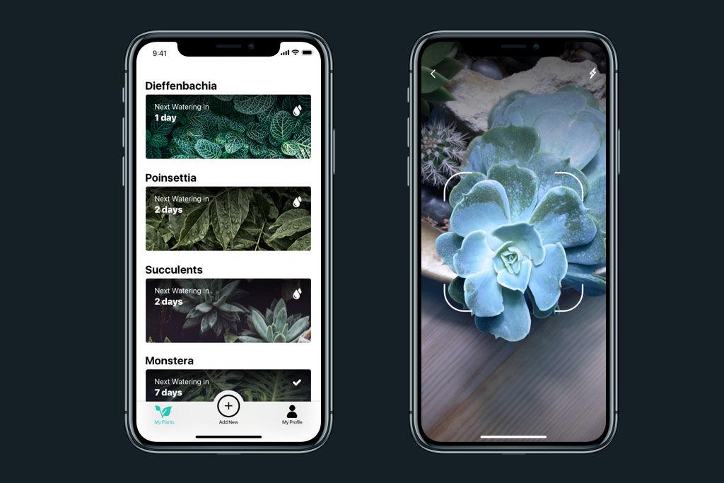 watering-tracker-interaction-design