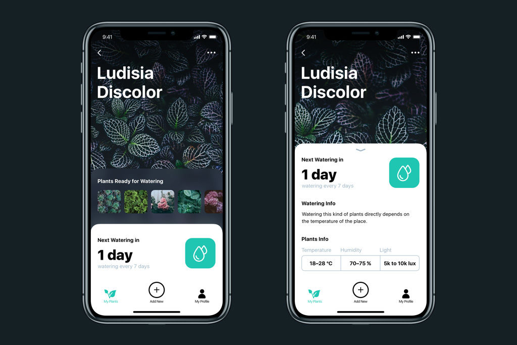 watering-tracker-UI-design
