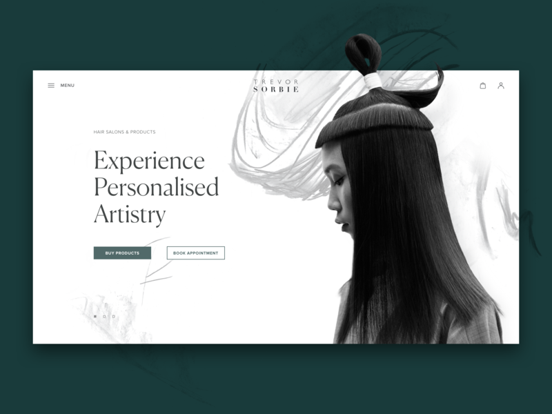 hair beauty website design