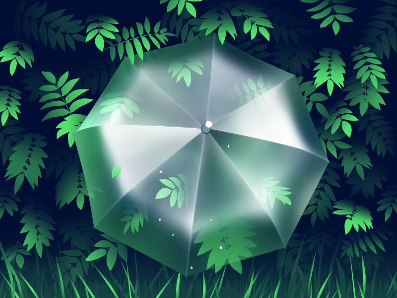spring umbrella illustration