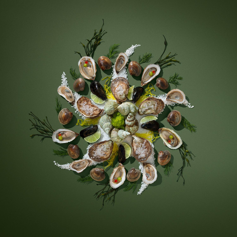 food photo design