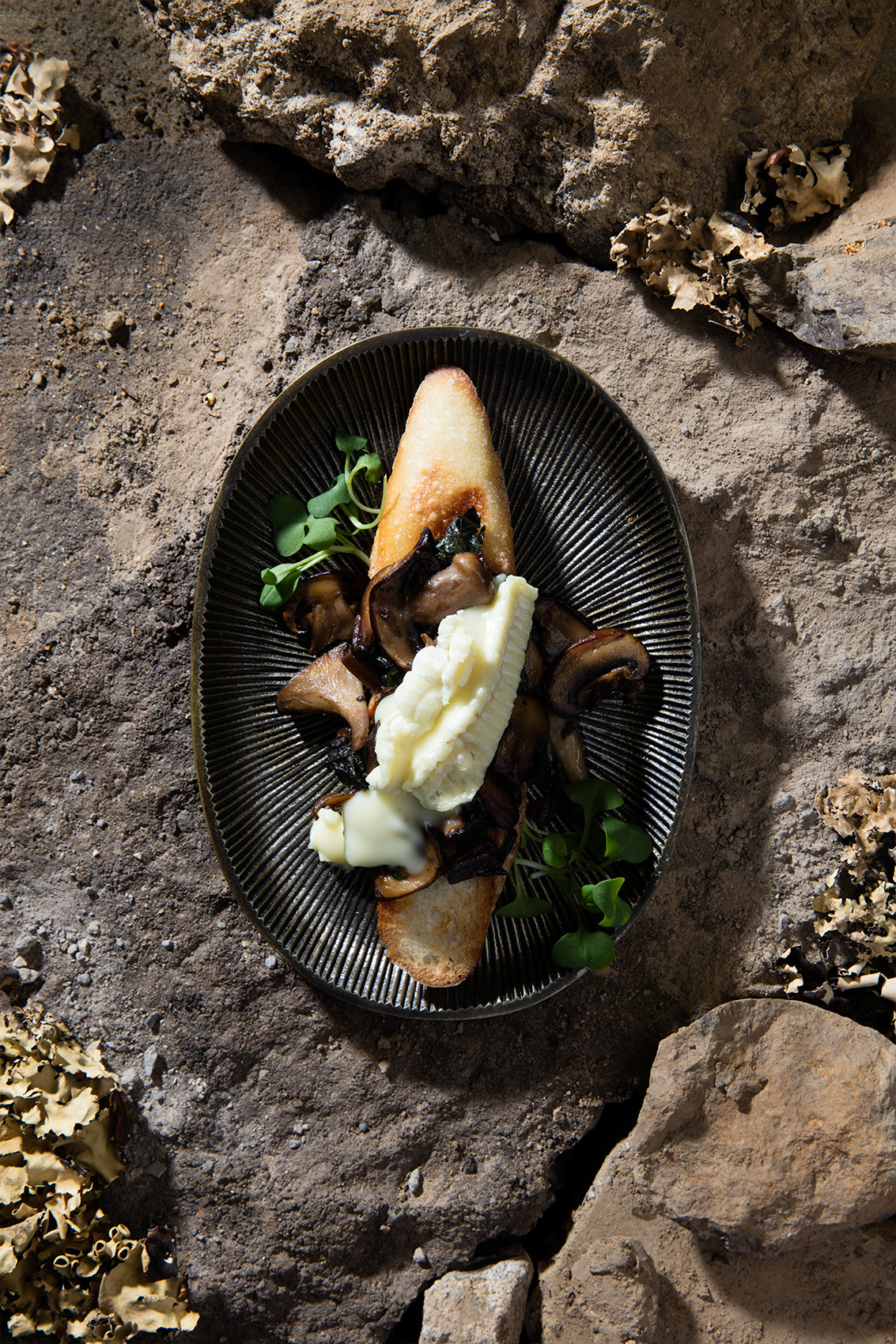 photo art food inspiration