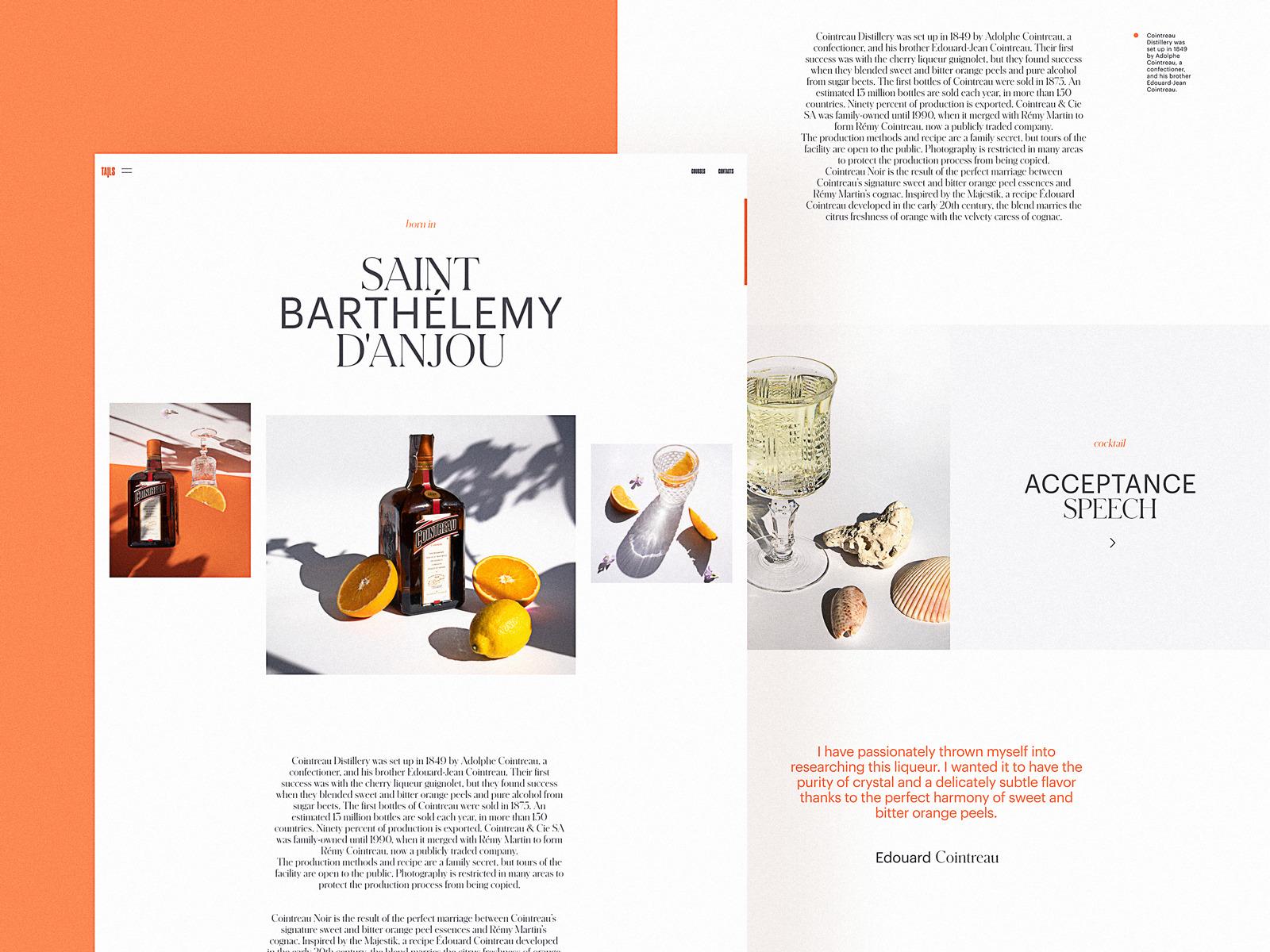 bartending encyclopedia website design