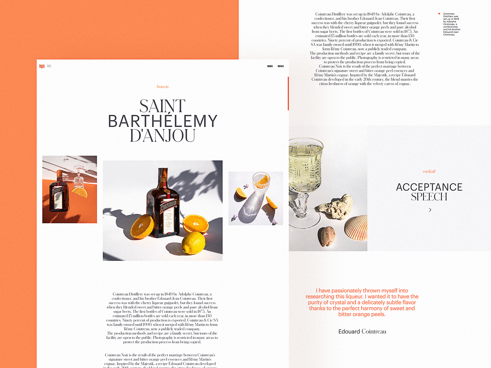 bartending encyclopedia website design