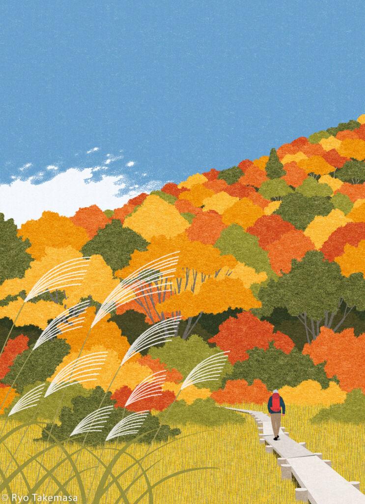 autumn cover illustration
