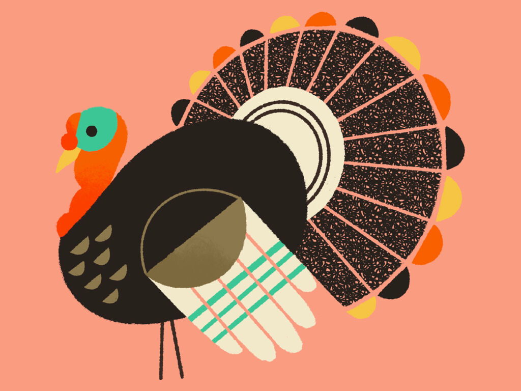 turkey illustrations